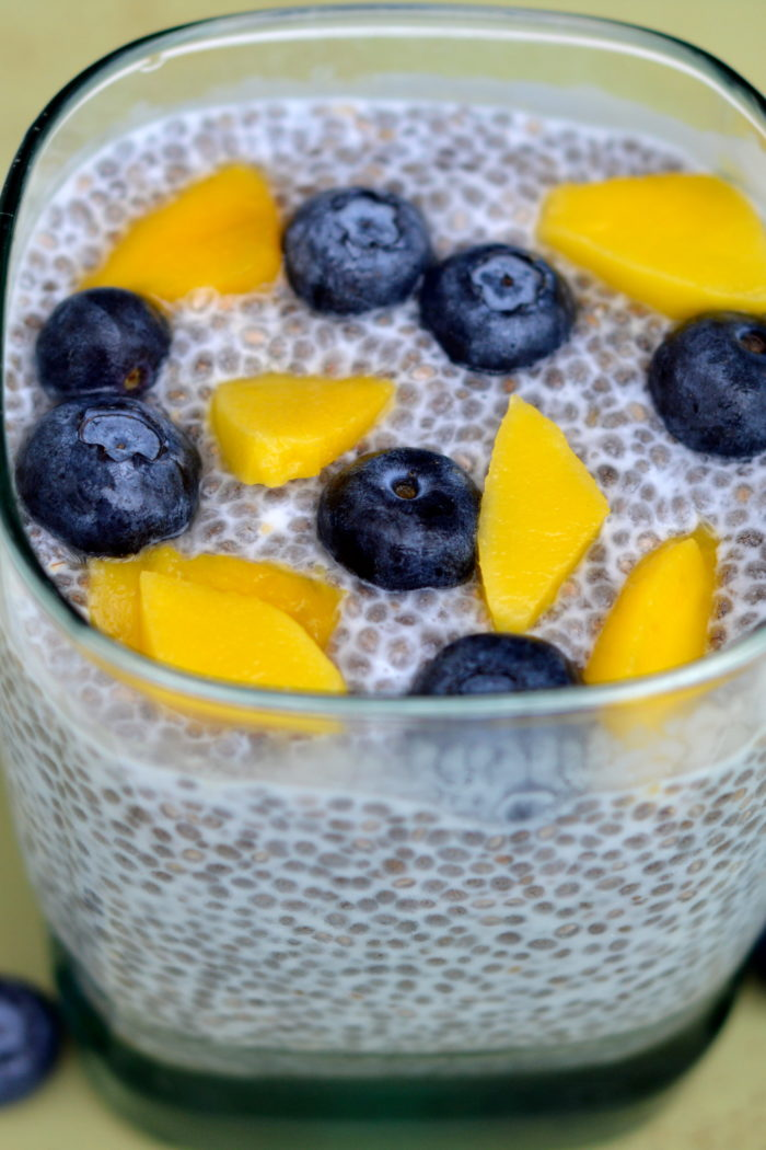 Mango Blueberry Chia Seeds Pudding